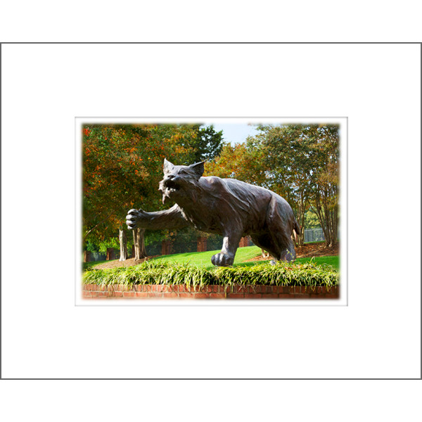 "Image For 8""x10"" Davidson Wildcat Print With Mat"