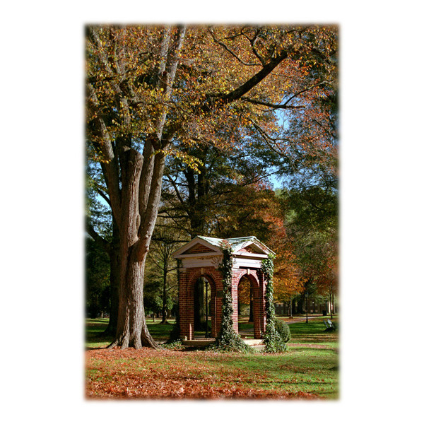 Image For Single Note Card Old Well In Autumn