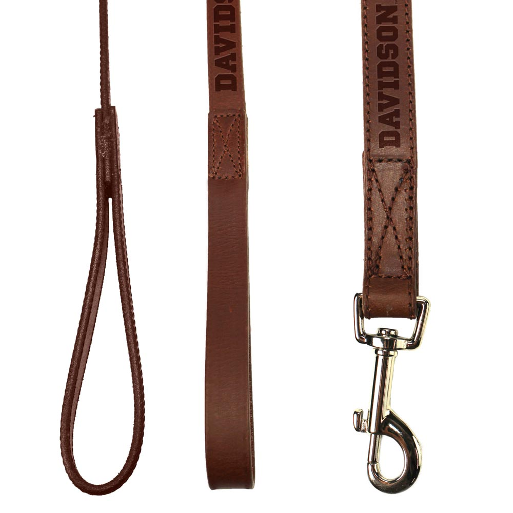 Image For Leather Pet Leash