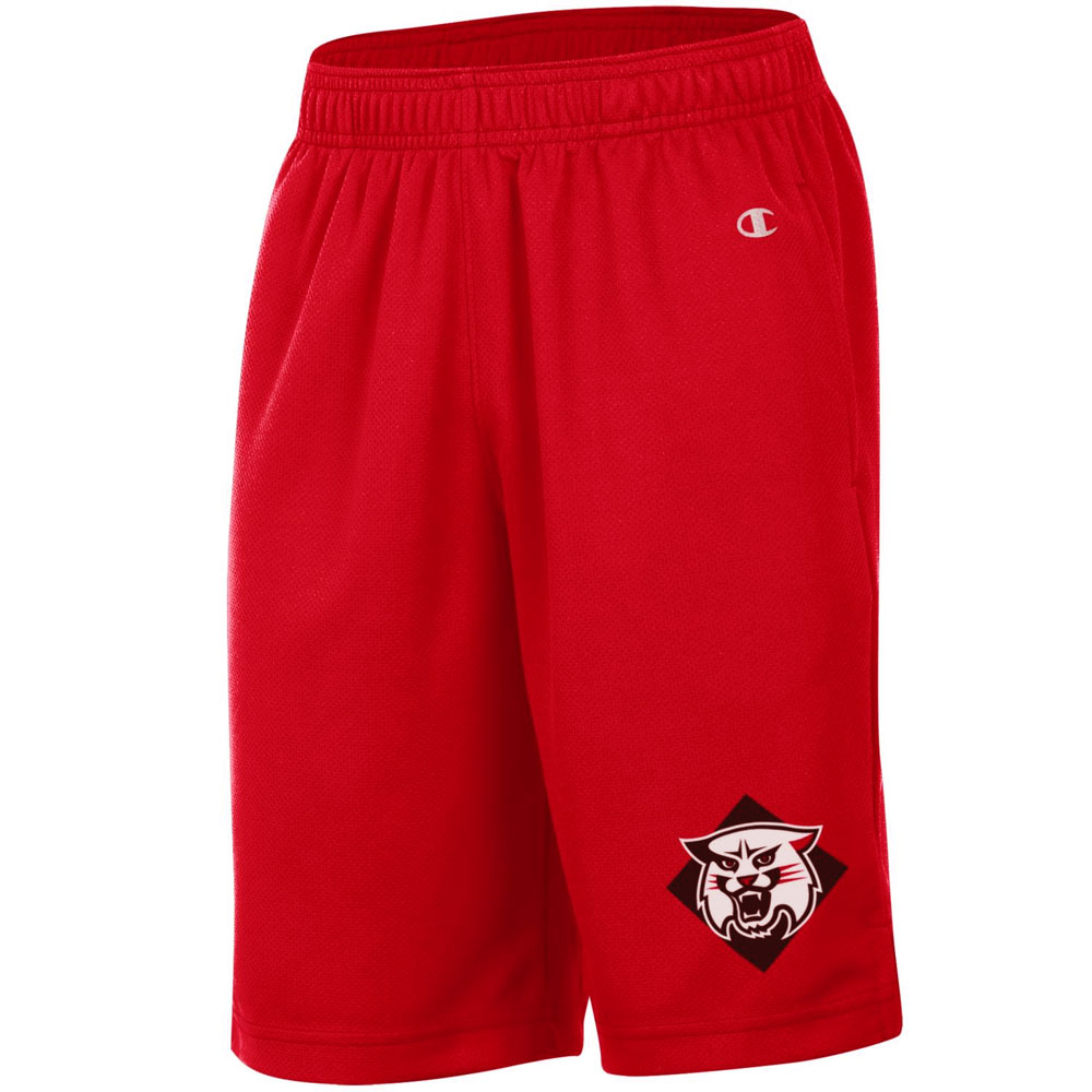 Image For YOUTH MESH SHORTS - Red - WILDCAT